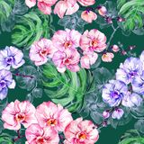 Blue and pink orchid flowers and big monstera leaves on dark green background. Seamless floral pattern. Watercolor painting. Hand drawn illustration. Can be stock illustration