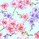 Blue and pink orchid flowers on light blue background. Seamless floral pattern. Watercolor painting. Hand drawn illustration. royalty free illustration