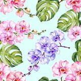 Blue and pink orchid flowers and monstera leaves on light blue background. Seamless floral pattern. Watercolor painting. Blue and pink orchid flowers and Royalty Free Stock Photo