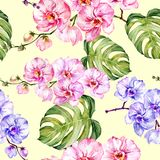 Blue and pink orchid flowers and monstera leaves on light yellow background. Seamless floral pattern. Watercolor painting. Hand drawn illustration. Can be used Royalty Free Stock Image