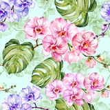 Blue and pink orchid flowers with outlines and large green monstera leaves on light blue background. Seamless pattern. Watercolor painting. Hand drawn Stock Photos
