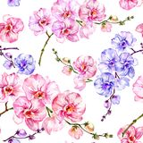 Blue and pink orchid flowers on white background. Seamless floral pattern. Watercolor painting. Hand drawn illustration. Blue and pink orchid flowers on white Royalty Free Stock Photo