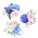 Blue, pink and purple hydrangea, orchid, rose, white chrysanthem. Um, ranunculus, eucalyptus and greenery vector design bouquets.Beautiful spring wedding flowers Stock Photo