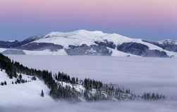 Blue and pink sky, at blue hour in the winter. Snow, forest, tree, peak, fog stock photos