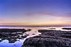 Blue pink sunrise hannafore point uk Royalty Free Stock Image