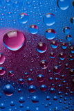 Blue and pink water droplets Royalty Free Stock Photo