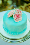 Blue and pink wedding cake. Royalty Free Stock Image