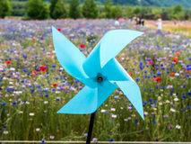 Blue Pinwheel. And Outfocusing Flowers Stock Image