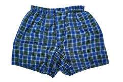 Blue Plaid Boxers Royalty Free Stock Images