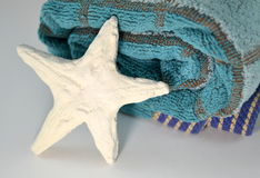 Blue plaid towel and starfish Stock Photos