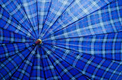 Blue plaid umbrella background Stock Photo