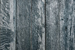 Blue planks background Royalty Free Stock Photography