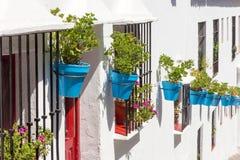 Blue plantpots against whitewashed walls Royalty Free Stock Image