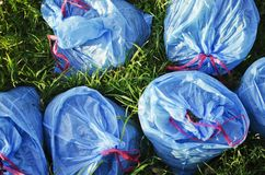 Blue plastic bags Royalty Free Stock Photos