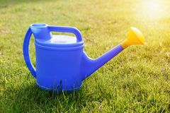 Blue plastic watering can with a yellow lens on a green lawn royalty free stock images