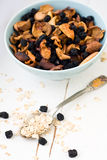 Blue plate with dried apples and berries and a spoon of oatmeal Royalty Free Stock Images