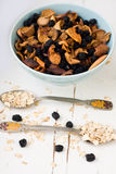 Blue plate with dried apples and berries and a spoon of oatmeal Stock Image