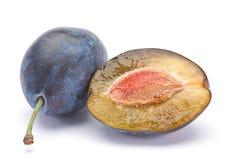 Blue plum royalty free stock photo