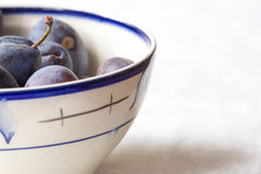 Blue plum lying in soup plate. Violet color fresh background Stock Photos