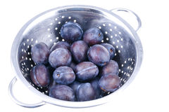 Blue plums in colander Royalty Free Stock Photography