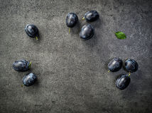 Blue plums on dark background Stock Photos