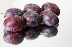 Blue plums or prunes Royalty Free Stock Image