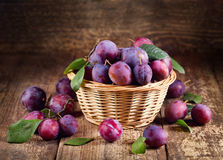 Blue plums Royalty Free Stock Images