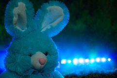 Blue plush hare. Royalty Free Stock Image