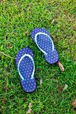 The blue polka dot sandal on the grass Royalty Free Stock Photos