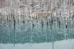 Blue pond Stock Photos