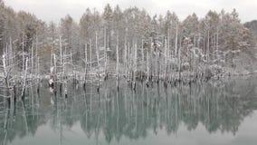 Blue pond stock footage
