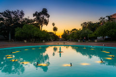 Blue pool in Balboa Park   Royalty Free Stock Images