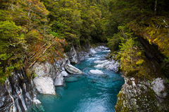 Blue Pool in New Zealand Stock Images