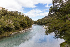 Blue pool, New Zealand Royalty Free Stock Images