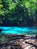 Blue Pool. Blue Poor and tree Stock Photography