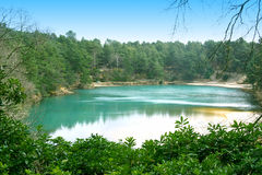 Blue Pool - Turquoise Lake, UK. The Blue Pool - a turquoise lake in a reserve in Dorset, England, with gorse bushes in the foreground and pines in the background Stock Images
