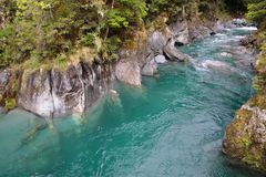 Blue pools near Haast Pass Royalty Free Stock Photos