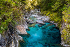 Blue Pools, New Zealand royalty free stock photography