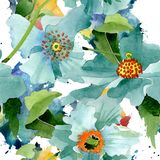 Blue poppy floral botanical flower. Watercolor background illustration set. Seamless background pattern. Blue poppy botanical flower. Wild spring leaf stock illustration