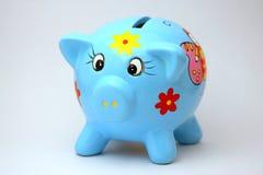 Blue pork. The blue pork with money Stock Photo