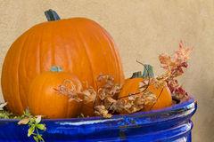 Blue pot holds pumpkins and leaves Stock Photos