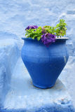 Blue pot with purple flower in blue city Stock Photography