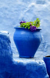 Blue pot Royalty Free Stock Images