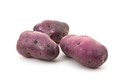 Blue potato - Vitellotte Royalty Free Stock Image