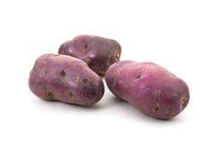 Blue potato - Vitellotte Royalty Free Stock Image