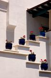 Blue Pots Stock Photo