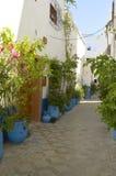 Blue pots Stock Image