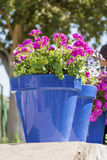 Blue pots with pink geranium flowers for street decoration in Spain Royalty Free Stock Photos