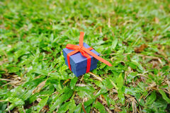 Blue present box with red ribbon Royalty Free Stock Image