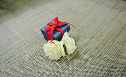 Blue present box with red ribbon Royalty Free Stock Images